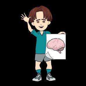 brain4kids-Bewegung und Gehirnentwicklung