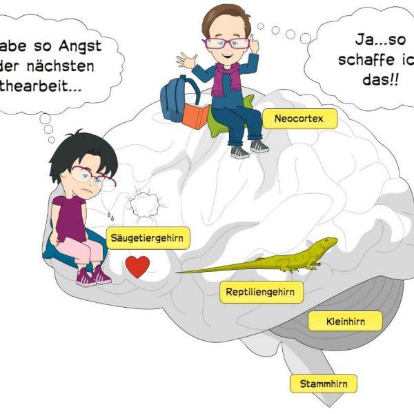 brain4kids Blog Prüfungsangst